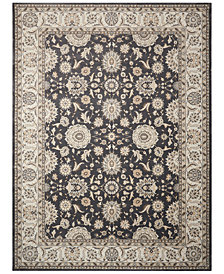 "Nourison Persian King PK02 9'3"" x 12'9"" Area Rug"