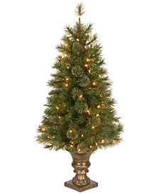 4' Atlanta Spruce Entrance Tree with 100 Clear Lights