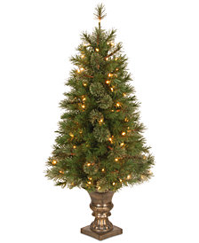 National Tree Company 4' Atlanta Spruce Entrance Tree with 100 Clear Lights