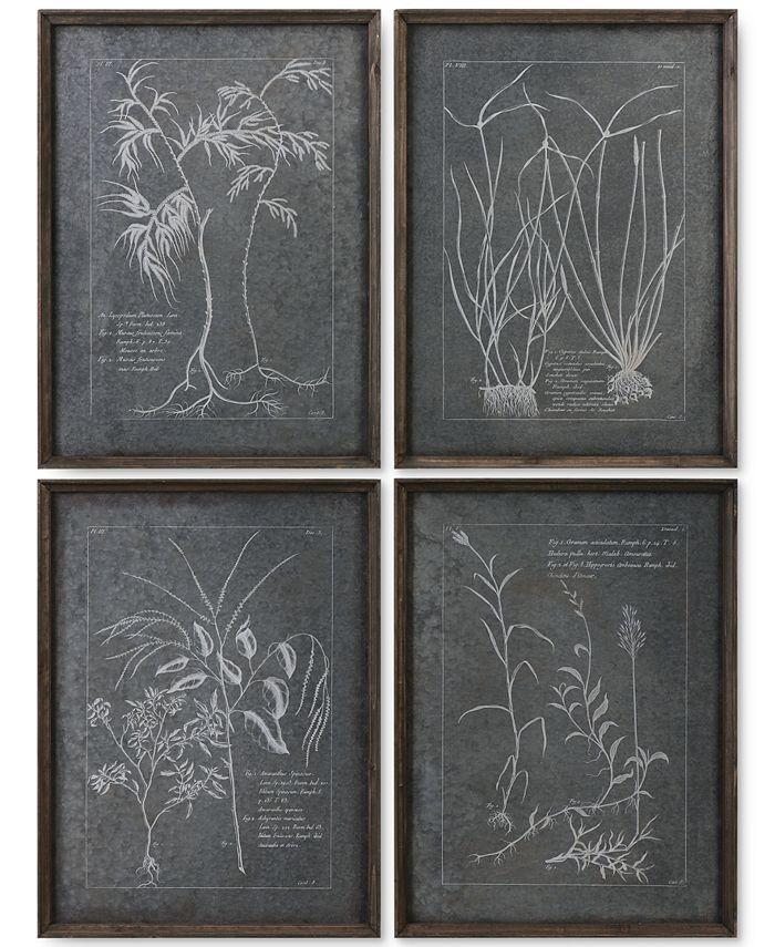 Uttermost - Root Study 4-Pc. Print Wall Art