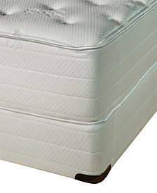 Nature's Spa by Paramount Exhale Latex 16'' Plush Mattress Set- Queen Split