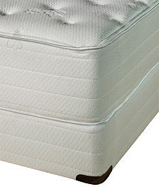 Nature's Spa by Paramount Exhale Latex 16'' Plush Mattress Set- Queen
