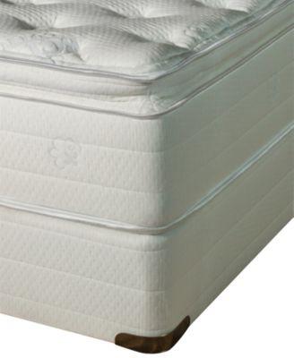 Oasis Latex 13'' Plush Pillow Top Mattress Set- Twin