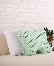 CLOSEOUT! Authentic Comfort® Green Tea Memory Foam Contour Pillow
