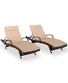 Farron Cushion Adjustable Lounge with Arms (Set of 2), Quick Ship