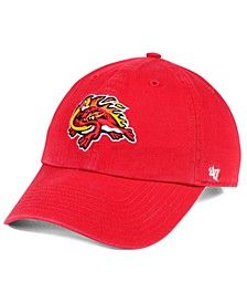 Florida Fire Frogs CLEAN UP Cap