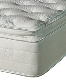 Nature's Spa by Paramount Oasis Latex 13'' Plush Pillow Top Mattress- Twin