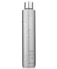 Platinum Working Spray 14, 10-oz., from PUREBEAUTY Salon & Spa