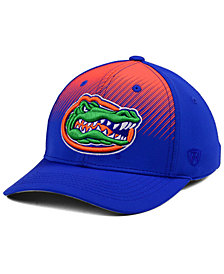 Top of the World Florida Gators Fallin Stretch Cap