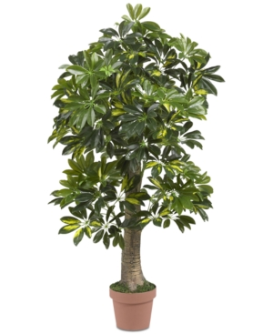 Nearly Natural 4 Schefflera Real Touch Tree