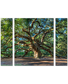 Pierre Leclerc 'Angel Oak Charleston' Small Multi-Panel Wall Art Set