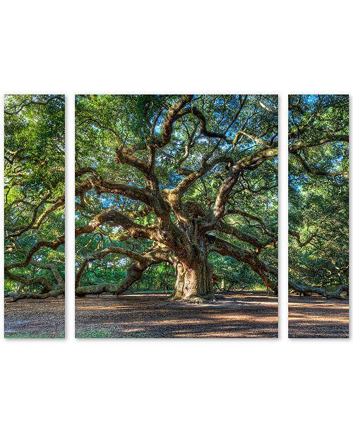 "Trademark Global Pierre Leclerc 'Angel Oak Charleston' Multi Panel Art Set Small - 32"" x 24"" x 2"""