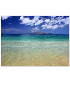 "Pierre Leclerc 'Hawaii Blue Beach' Canvas Wall Art, 30"" x 47"""