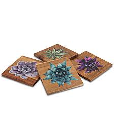 CLOSEOUT! Thirstystone Square Wood Succulent Coasters, Set of 4