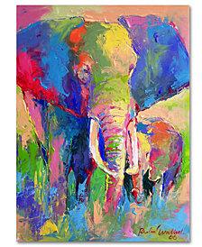 "Richard Wallich 'Elephant 1' 24"" x 32"" Canvas Wall Art"