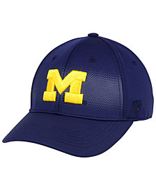 Top of the World Michigan Wolverines Life Stretch Cap