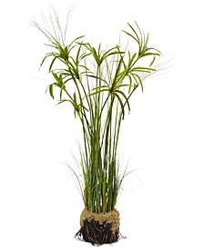 "48"" Papyrus Plant & Soil Artificial Arrangement"