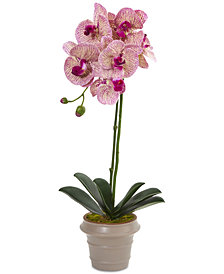 "Nearly Natural 20"" Designer Phalaenopsis Orchid Artificial Arrangement with Vase"
