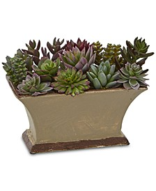 """6.5"""" Mixed Succulent Artificial Plant"""