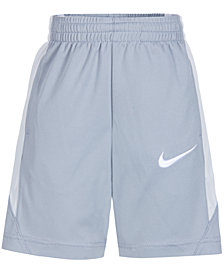 Nike Little Boys Performance Swoosh Shorts