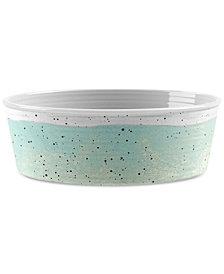 TarHong Desert Wash Speckle Mint Green Medium Pet Bowl