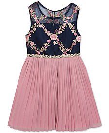 Rare Editions Toddler Girls Embroidered Pleated Dress