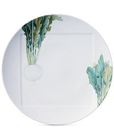 Noritake Kyoka Shunsai Radish Dinner Plate