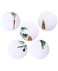 Noritake Kyoka Shunsai 5-Pc. Plate Set