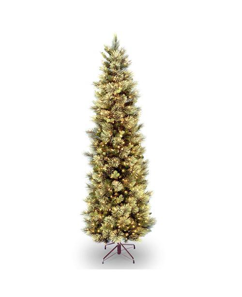 National Tree Company National Tree 6 .5' Carolina Pine Slim Tree with Flocked Cones & 350 Clear Lights