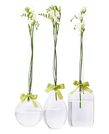 Sleek And Chic Vase Trio