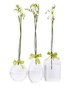 Sleek And Chic Vase Trio