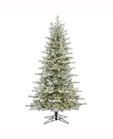 7.5' Frosted Eastern Frasier Fir Artificial Christmas Tree with 700 Warm White LED Lights
