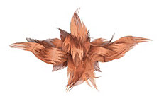Rose Feathers Wall Art