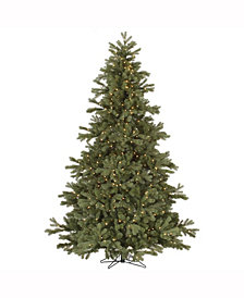 7.5' Frasier Fir Artificial Christmas Tree with 750 Clear Lights