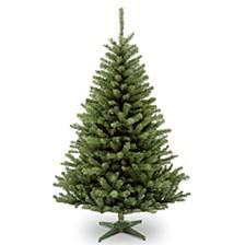 National Tree 6' Kincaid Spruce Tree