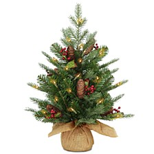 2' Feel Real(R) Nordic Spruce Small Tree with Cones & Red Berries in Burlap with 50 Warm White LED Lights wandTimer
