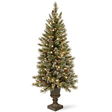 National Tree 5' Glittery Bristle Pine Entrance Tree with White Tipped Cones