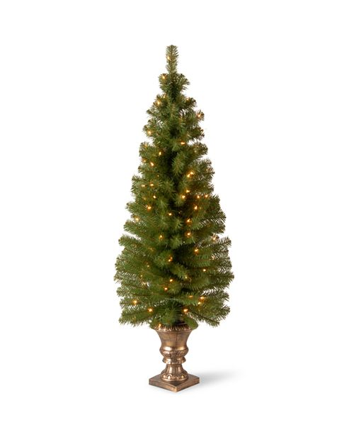 "National Tree Company 5' Montclair Spruce Entrance Tree in 12"" Black/Gold Plastic Pot with 100 Clear Lights"