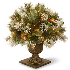 "National Tree Company 24"" Wintry Pine Porch Bush with Cones & Red Berries & 50 Clear Lights"