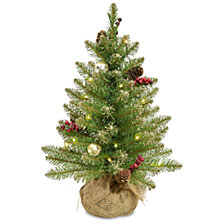 National Tree Company 2' Glittery Gold Dunhill® Fir Tree in Burlap Base with Red Berries, Cones, Gold Ornaments & 15 Warm White Battery Operated LED Lights with Timer
