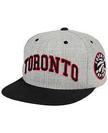 Mitchell & Ness Toronto Raptors Side Panel Cropped Snapback Cap