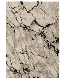 Palmetto Living Carolina Wild Great Falls Natural 9' x 13' Area Rug