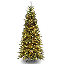 National Tree Tiffany Slim Fir Tree With 550 Clear Lights