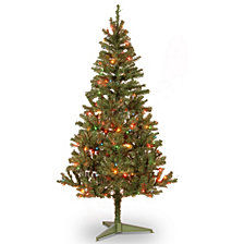 National Tree 6 FT Canadian Grande Stature Tree