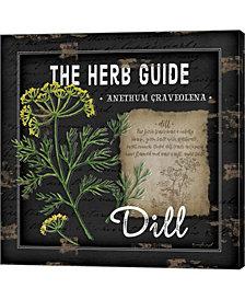 Herb Guide Dill By Jennifer Pugh Canvas Art
