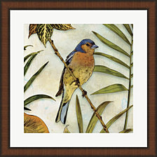 Jungle Bird II by Edward Selkirk Framed Art