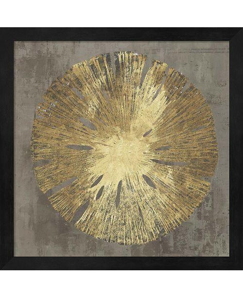 Metaverse Sand Dollar Ia By Aimee Wilson Framed Art