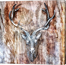 Silver Antler by Golie Miamee Canvas Art