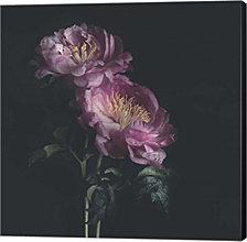 Dark Florals by Sarah Gardner Canvas Art
