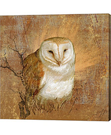 Owl in the wood by Art Licensing Studio Canvas Art